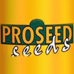 پروسید-proseed-seeds