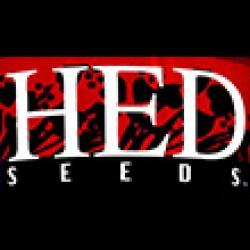 هد-hed seeds