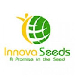 اینووا سیدز-innova seeds