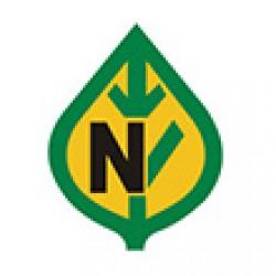 نیکرسون-nickerson