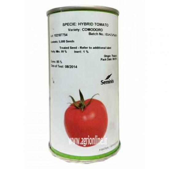 بذر گوجه فرنگی هیبرید کمودورو سمینیس پلیت شده-comodoro
